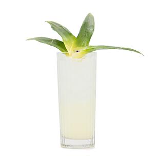 Palm Tree Paradise Recipe - Blue Chair Bay®