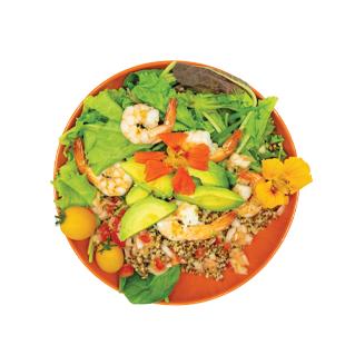Key Lime Shrimp Quinoa Salad Recipe - Blue Chair Bay®