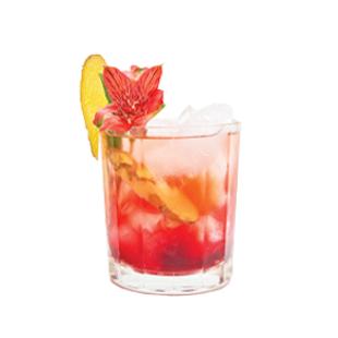 Hibiscus Ginger Lemon Recipe - Blue Chair Bay®