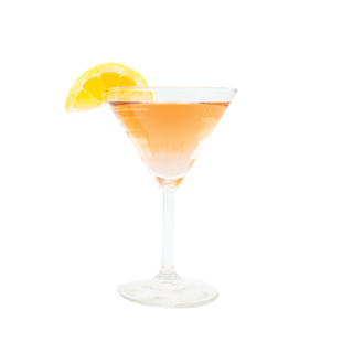 Cranberry Martini Recipe - Blue Chair Bay®